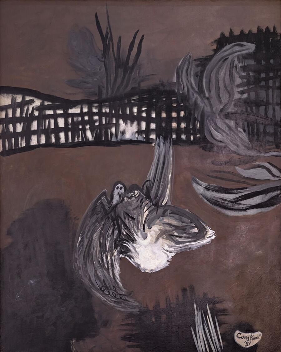 Gewonde duif