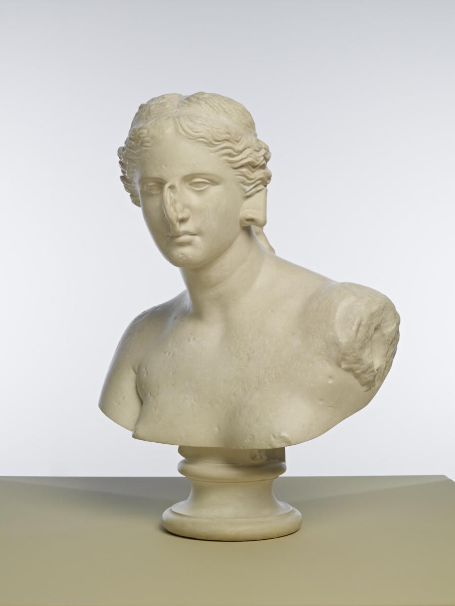 Tête otorhinologique de Vénus (Otorhinologisch hoofd van Venus)