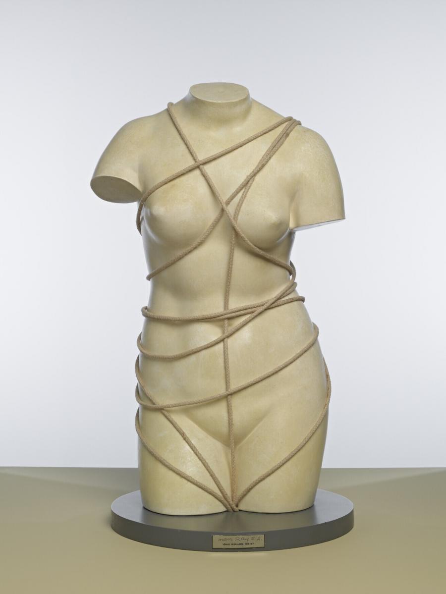Vénus restaurée (Gerestaureerde Venus)