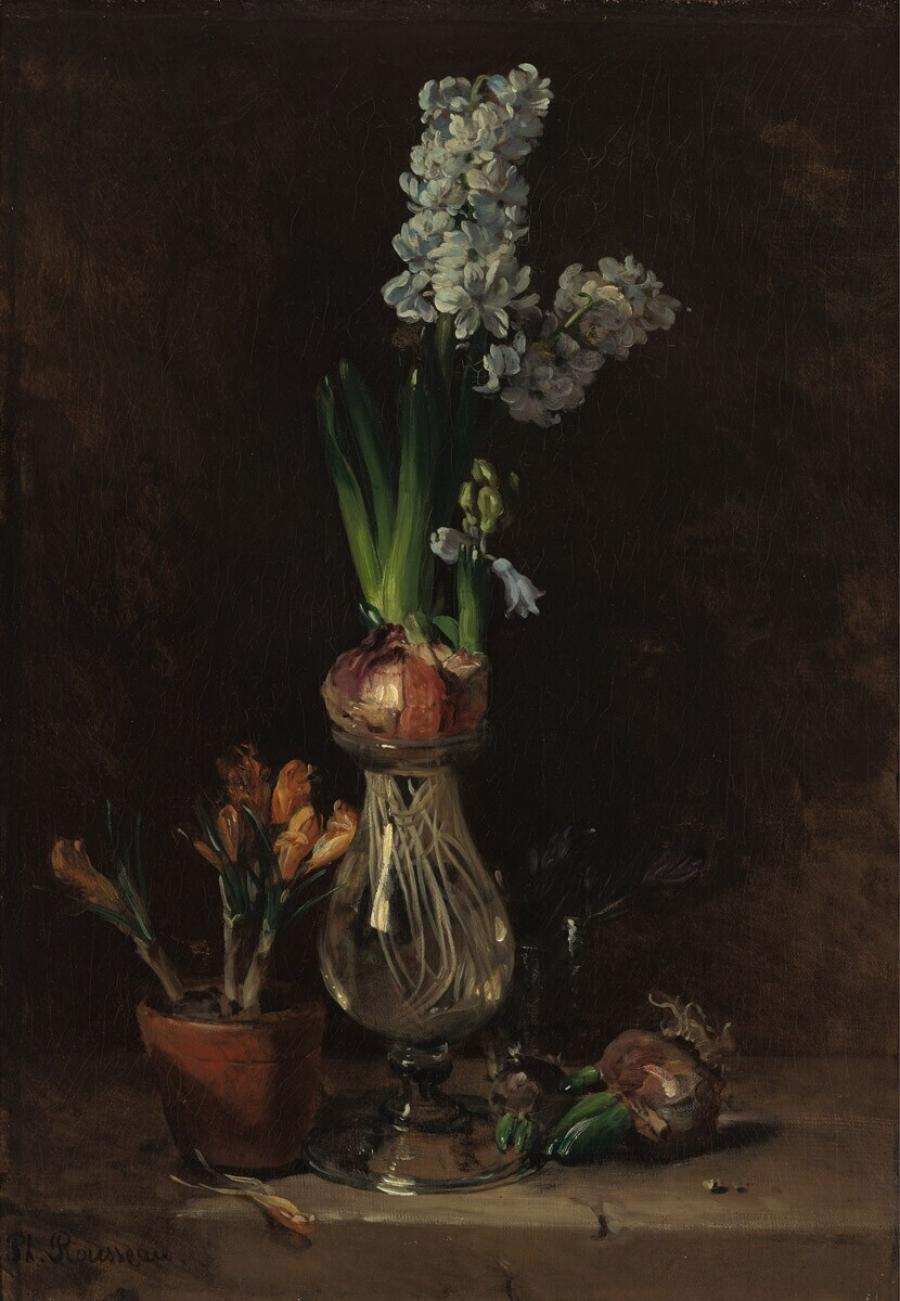 Still Life with Hyacinth