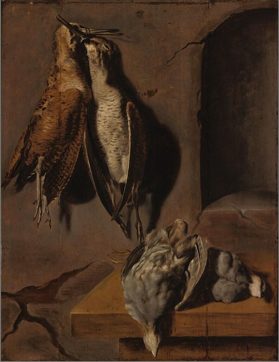 Dode snippen en ander dood gevogelte