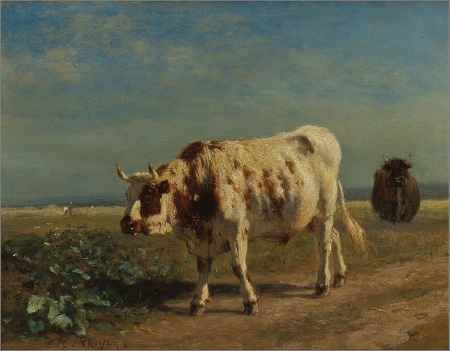 De witte stier