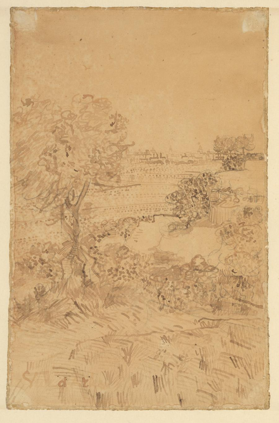 Landscape with Trees and a Distant View of Arles (Provence-Alpes-Côte d'Azur region, France)