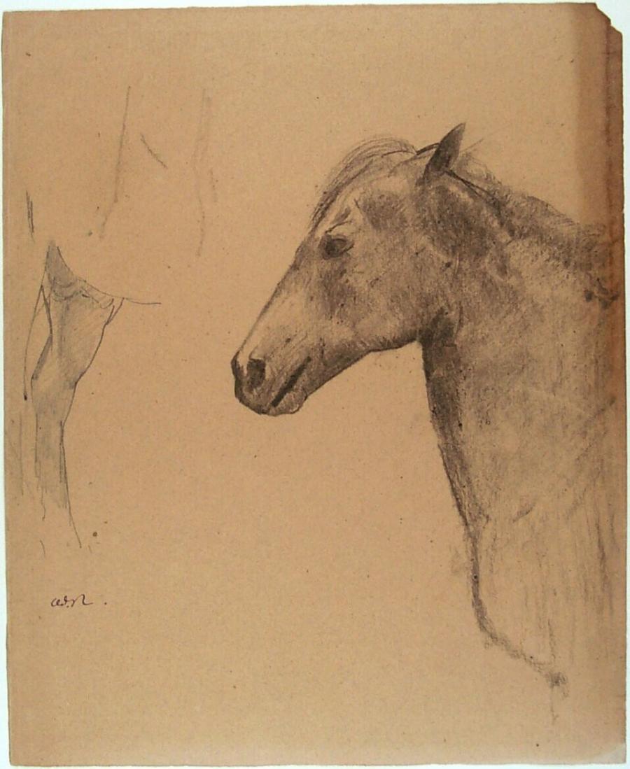 Schets van een paardenhoofd en -been