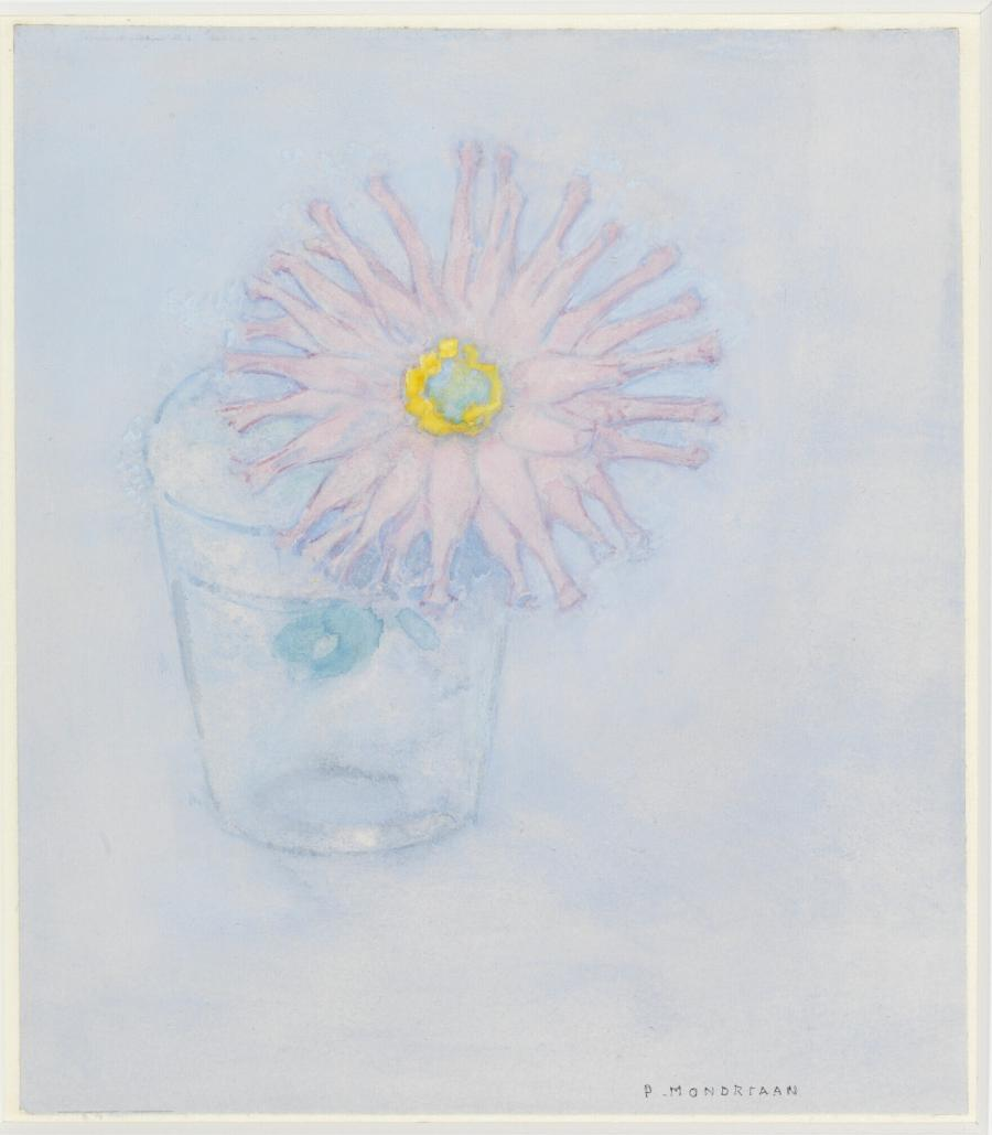 Chrysanthemum in a Glass